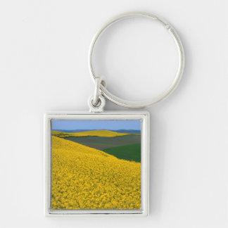 USA, Washington, Whitman County, Palouse, Canola Silver-Colored Square Keychain