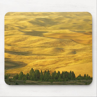 USA, Washington, Whitman County, Palouse, Wheat Mouse Pad