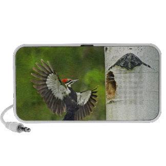 USA, Washington, Yakima. Male pleated iPhone Speakers