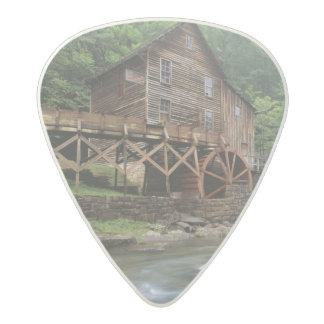 USA, West Virginia, Babcock SP. Rustic Glade Acetal Guitar Pick