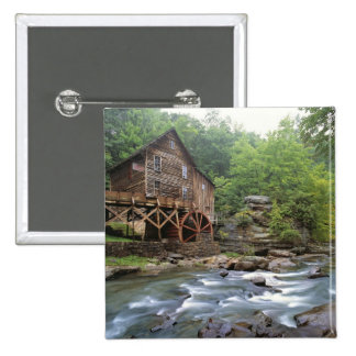 USA, West Virginia, Babcock SP. Rustic Glade Button