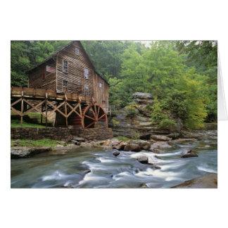 USA, West Virginia, Babcock SP. Rustic Glade Card