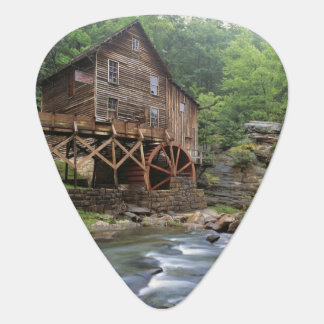 USA, West Virginia, Babcock SP. Rustic Glade Guitar Pick