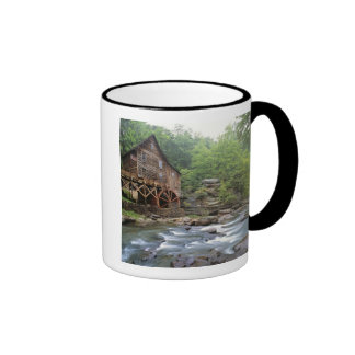 USA, West Virginia, Babcock SP. Rustic Glade Ringer Coffee Mug