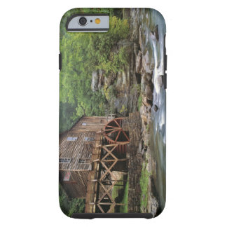 USA, West Virginia, Babcock SP. Rustic Glade Tough iPhone 6 Case