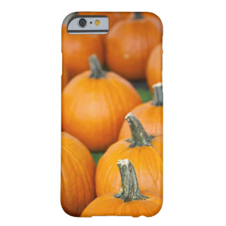 USA, West Virginia, Charleston. Capitol 2 Barely There iPhone 6 Case