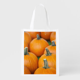 USA, West Virginia, Charleston. Capitol 2 Reusable Grocery Bag