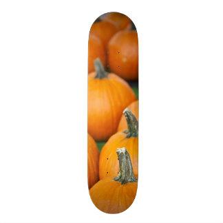 USA, West Virginia, Charleston. Capitol 2 Skate Board Deck