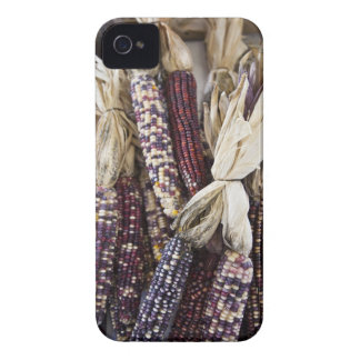 USA, West Virginia, Charleston. Capitol iPhone 4 Cover