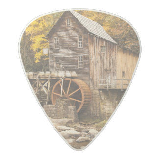 USA, West Virginia, Clifftop. Babcock State 2 Acetal Guitar Pick