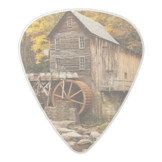 USA, West Virginia, Clifftop. Babcock State 2 Acetal Guitar Pick
