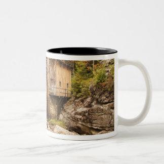 USA, West Virginia, Clifftop. Babcock State 2 Two-Tone Coffee Mug