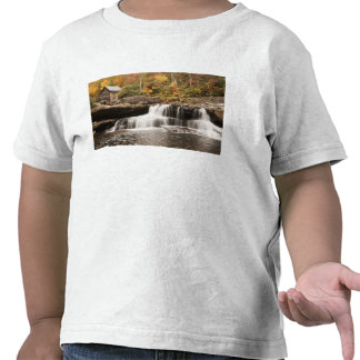 USA, West Virginia, Clifftop. Babcock State T-shirts