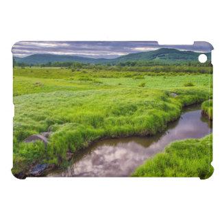 USA, West Virginia, Davis. Landscape 2 iPad Mini Cases