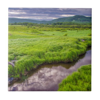 USA, West Virginia, Davis. Landscape 2 Tile