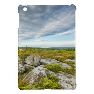 USA, West Virginia, Davis. Landscape In Dolly iPad Mini Cover