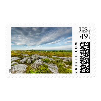 USA, West Virginia, Davis. Landscape In Dolly Postage