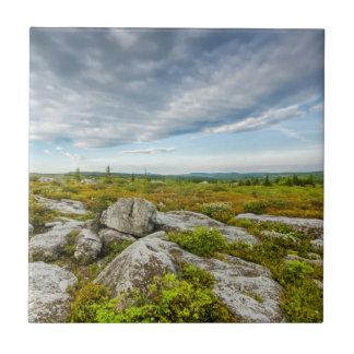 USA, West Virginia, Davis. Landscape In Dolly Tile