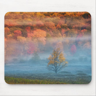 USA, West Virginia, Davis. Misty valley and Mouse Pad