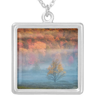 USA, West Virginia, Davis. Misty valley and Square Pendant Necklace