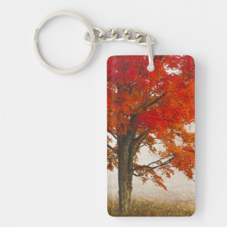 USA, West Virginia, Davis. Red maple in autumn Double-Sided Rectangular Acrylic Keychain