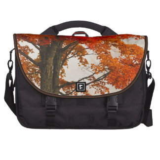 USA, West Virginia, Davis. Red maple in autumn Bag For Laptop