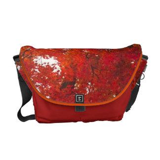 USA, West Virginia, Davis. Red maple in autumn Courier Bag