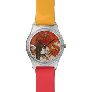 USA, West Virginia, Davis. Red maple in autumn Wrist Watch