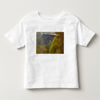 USA, West Virginia, Fayetteville. New River Toddler T-shirt