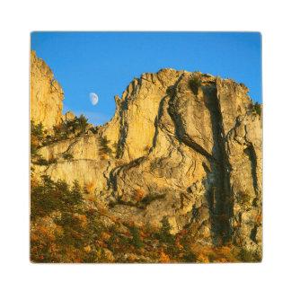 USA, West Virginia, Spruce Knob-Seneca Rocks 2 Wood Coaster