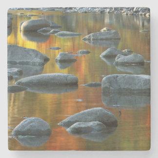 USA, West Virginia, Spruce Knob-Seneca Rocks 3 Stone Coaster