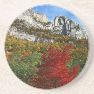 USA, West Virginia, Spruce Knob-Seneca Rocks Drink Coaster