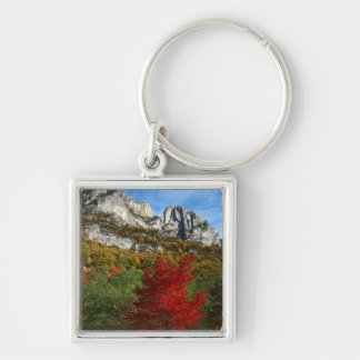 USA, West Virginia, Spruce Knob-Seneca Rocks Silver-Colored Square Keychain