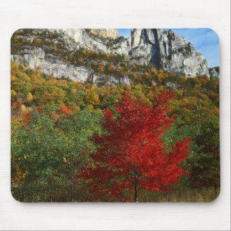 USA, West Virginia, Spruce Knob-Seneca Rocks Mouse Pad
