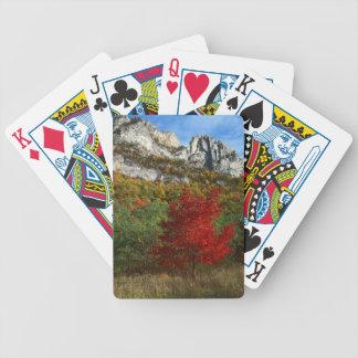 USA, West Virginia, Spruce Knob-Seneca Rocks Deck Of Cards