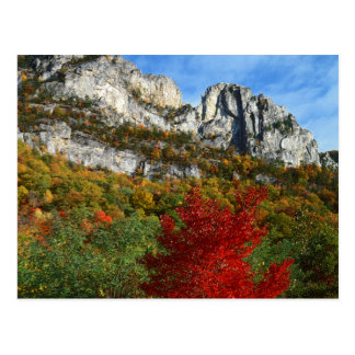 USA, West Virginia, Spruce Knob-Seneca Rocks Postcard