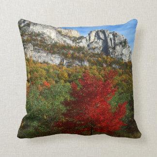 USA, West Virginia, Spruce Knob-Seneca Rocks Throw Pillow