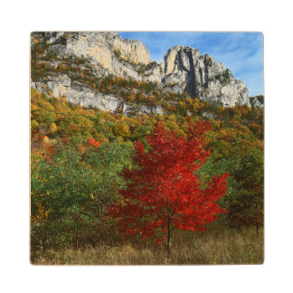 USA, West Virginia, Spruce Knob-Seneca Rocks Wooden Coaster