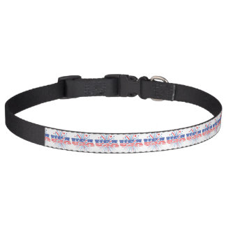 USA with red white and blue fireworks Pet Collar