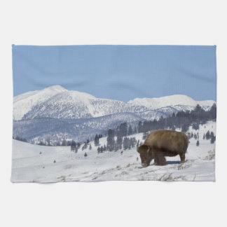 USA, WY, Yellowstone NP, American Bison Bison Hand Towel