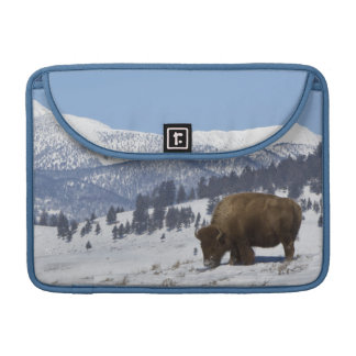 USA, WY, Yellowstone NP, American Bison Bison Sleeve For MacBook Pro
