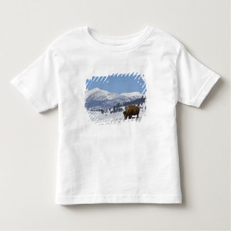 USA, WY, Yellowstone NP, American Bison Bison Toddler T-shirt