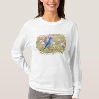 USA, Wyoming, Bighorn Mountains, Medicine T-Shirt