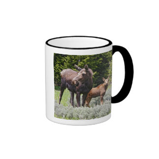 USA, Wyoming, Bighorn Mountains, moose Alces Ringer Mug