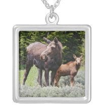 USA, Wyoming, Bighorn Mountains, moose Alces Silver Plated Necklace