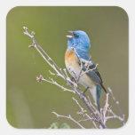USA, Wyoming, Bighorn National Recreation 2 Square Sticker