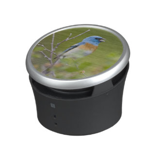 USA, Wyoming, Bighorn National Recreation Bluetooth Speaker