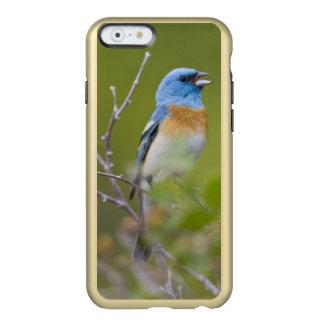 USA, Wyoming, Bighorn National Recreation Incipio Feather® Shine iPhone 6 Case