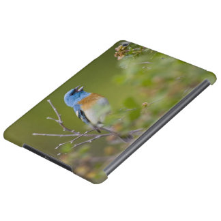 USA, Wyoming, Bighorn National Recreation iPad Air Covers