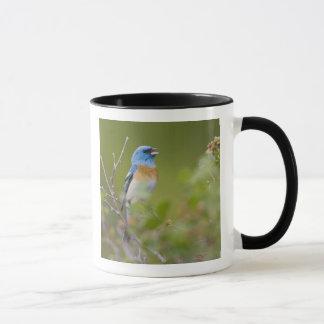 USA, Wyoming, Bighorn National Recreation Mug